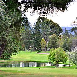 golf_deportes_web1